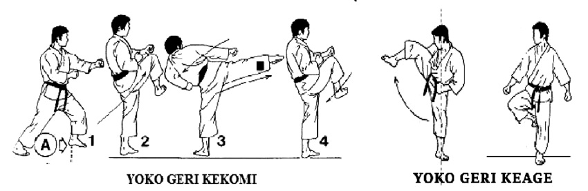 Direct-side-thrust-kick-Yoko-geri